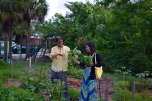 Nghi and Arlo Simonds, Pine Manor garden manager, pick Malabar spinach